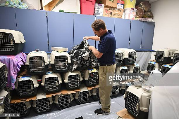 Volunteer takes care of pets in a makeshift shelter at the Timberlin Creek Elementary School in St. Augustine, Florida, on October 6 ahead of...