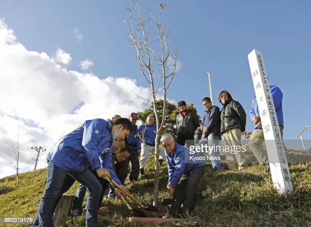 Volunteer workers from Kobe Hyogo Prefecture and local residents transplant a cherry blossom tree in Natori Miyagi Prefecture on Dec 11 as a symbol...