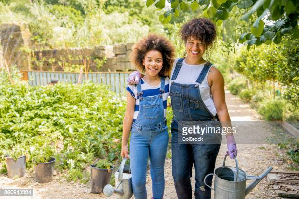 volunteering at the farm together - green glove stock photos and pictures