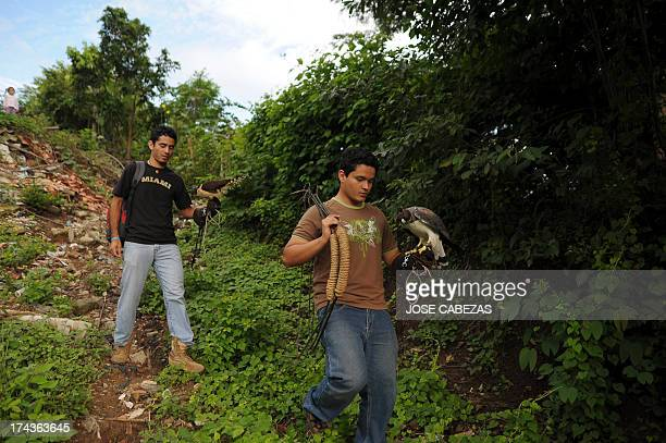 Volunteers Amir Alabi and Luis Rivas hold birds as they walk to a field for a flight training session near the Salvadorean Bird Rescue center in...