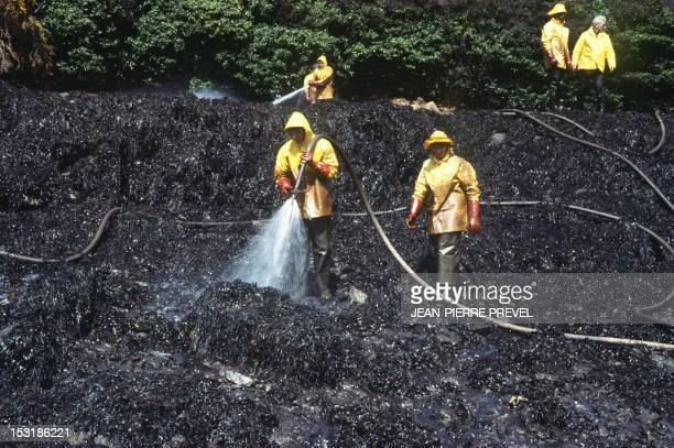 Volunteers clean rocks covered with oil in March 1978 after the sinking of the oil tanker Amoco Cadiz near the small port of Portsall on the...