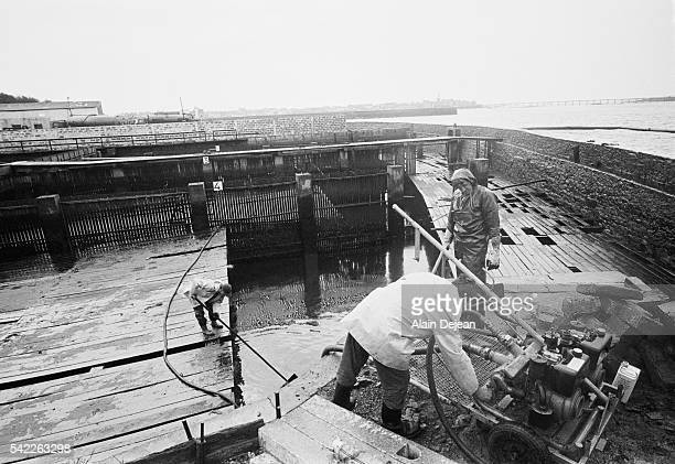 Volunteers cleaning up oil spread by high winds after the Amoco Cadiz disaster The supertanker Amoco Cadiz ran aground off the coast of Brittany on...