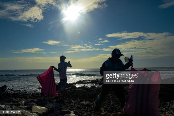 Volunteers collect garbage on the shore of Isabela Island in the Galapagos Archipelago in the Pacific Ocean 1000 km off the coast of Ecuador on...