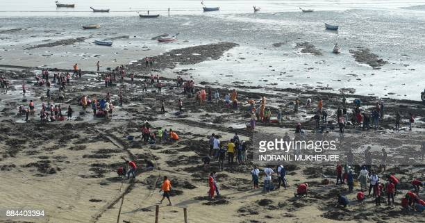 Volunteers collect trash during a clean up drive led by Indian lawyer and environmentalist Afroz Shah at the Versova beach in Mumbai on December 2...
