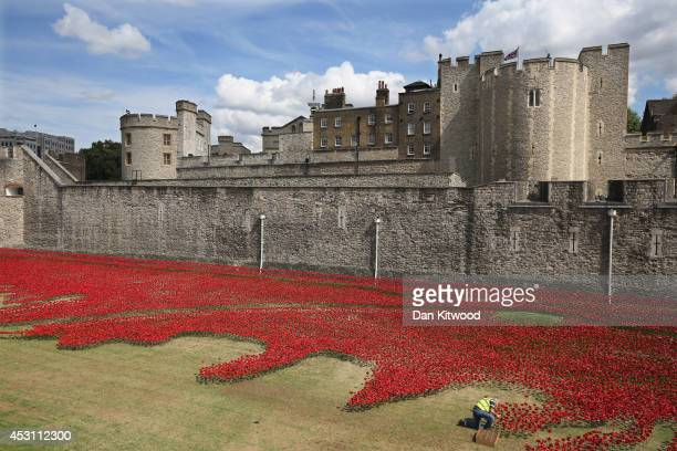 Volunteers continue to assemble an installation entitled 'Blood Swept Lands and Seas of Red' by artist Paul Cummins made up of 888246 ceramic poppies...