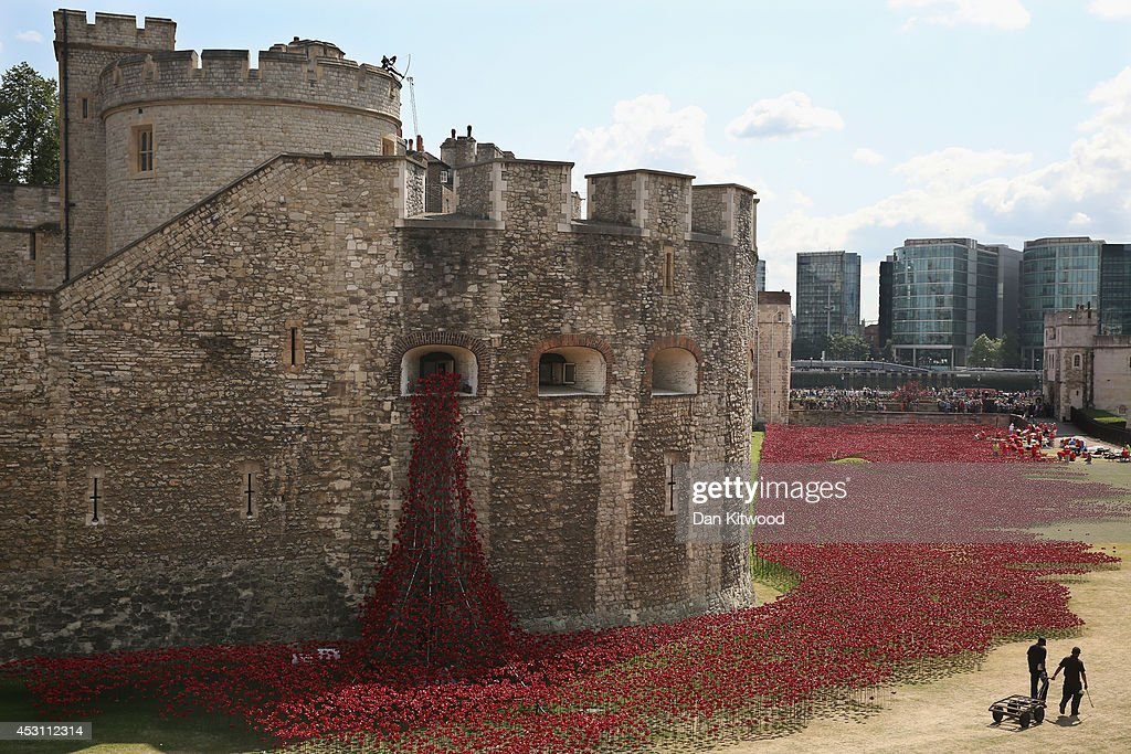Volunteers continue to assemble an installation entitled 'Blood Swept Lands and Seas of Red' by artist Paul Cummins, made up of 888,246 ceramic poppies, is seen in the moat of the Tower of London to commemorate the First World War on August 3, 2014 in London, England. Each ceramic poppy represents an allied victim of the First World War and the display is due to be completed by Armistice Day on November 11, 2014. After Armistice Day each poppy from the installation will be available to buy for 25 GBP.
