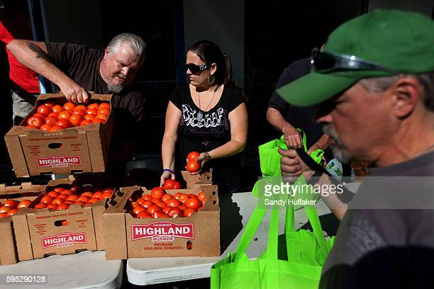 Volunteers Dave KlausL Loryan Doke help sort tomatoes at a Feeding America truck on Thursday November 3 2011 in Descanso California Feeding America...
