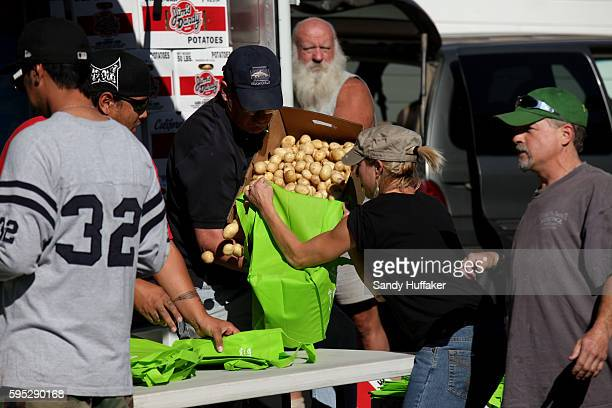 Volunteers fill bags with fresh produce at a Feeding America truck on Thursday November 3 2011 in Descanso California Feeding America is a charity...