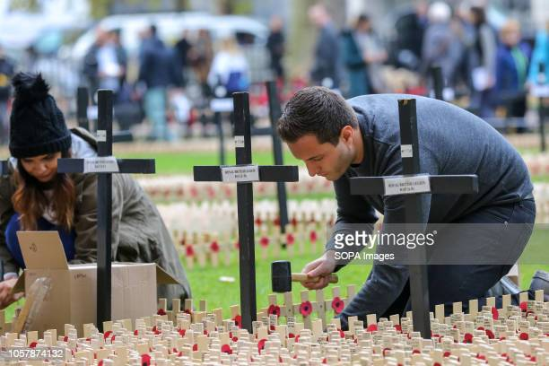Volunteers from the British Legion are seen planting crosses during preparations Volunteers from the British Legion prepare the Field of Remembrance...