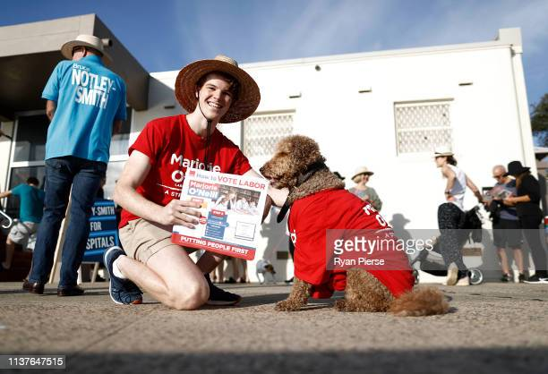 Volunteers hand out how to vote cards at Clovelly Surf Lifesaving Club on March 23 2019 in Sydney Australia The 2019 New South Wales state election...