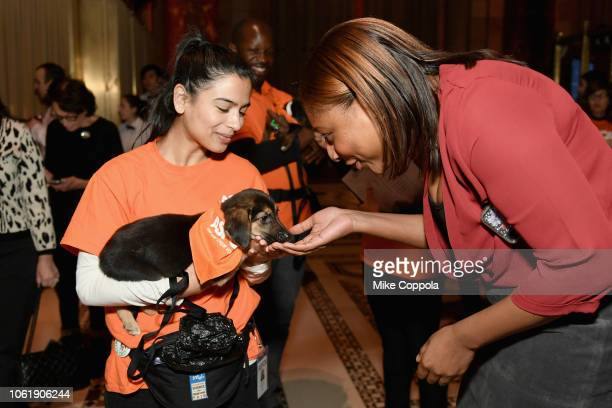 Volunteers interacting with the Adoptables at the ASPCA Hosts 2018 Humane Awards Luncheon at Cipriani 42nd Street on November 15 2018 in New York City