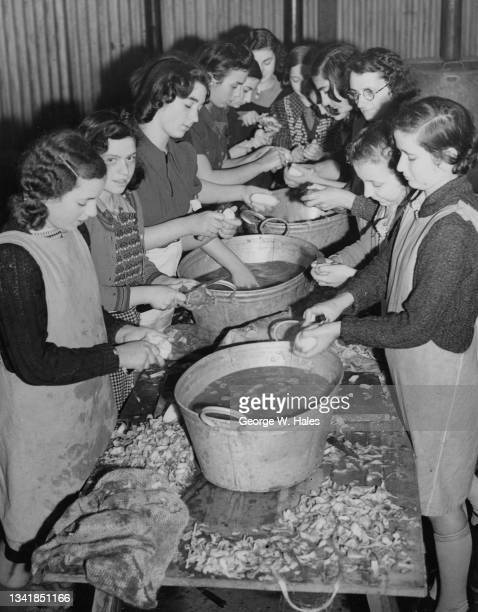 Volunteers peel potatoes in a makeshift kitchen in preparation of the daily meal served to refugees evacuated from London on 9th November 1939 at a...