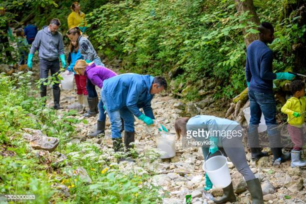 volunteers picking up trash in forest - large group of people stock pictures, royalty-free photos & images
