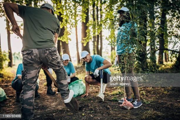公園に木を植えるボランティア - 植える ストックフォトと画像