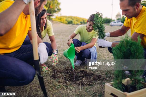 volunteers planting and seedlings in park - charity and relief work stock pictures, royalty-free photos & images
