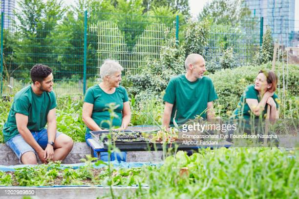 volunteers relaxing in community garden - compassionate eye foundation stock pictures, royalty-free photos & images