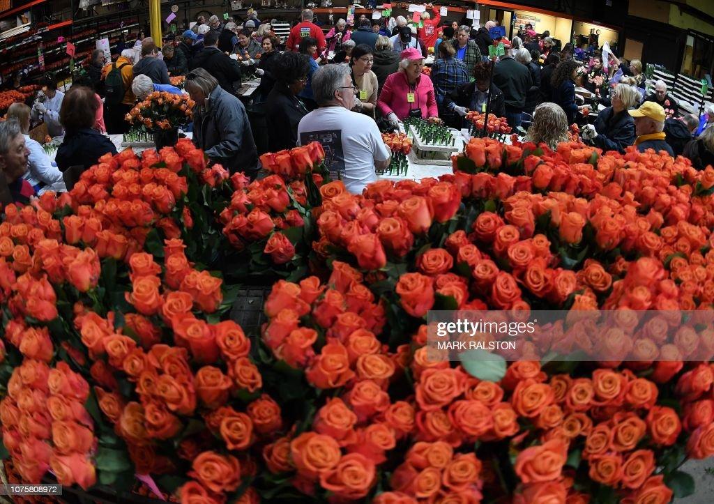 US-HOLIDAY-ROSE-PARADE : News Photo