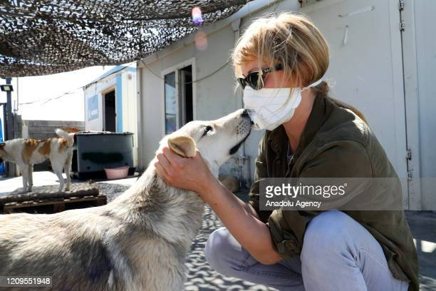 Volunteers take care of dogs at animal shelter which survives with the voluntary work of foreign benefactors in Erbil Iraq on April 8 2020 Care of...