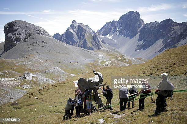 Volunteers use ropes to push an elephant a 200kgreplica of one of Hannibal's elephant by French artist Luc Dubost on the Cavalla Pass in the Maira...