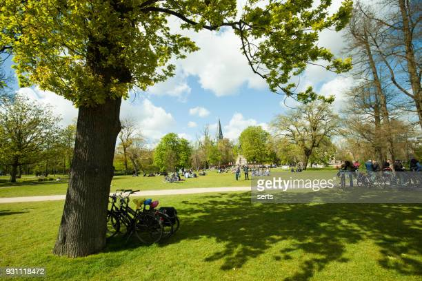 vondelpark, amsterdam, holland - public park stock photos and pictures