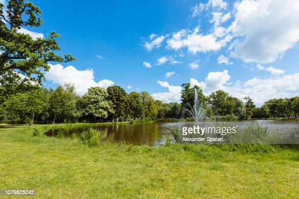 vondelpark on a bright sunny summer day, amsterdam, netherlands - pequeno lago - fotografias e filmes do acervo