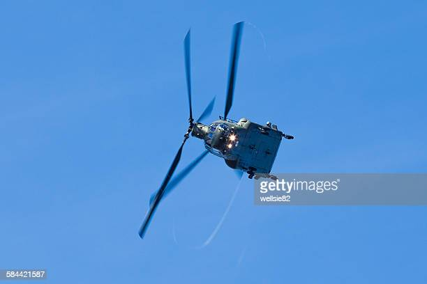 vortices off the chinook's rotor blades - chinook dog stock photos and pictures