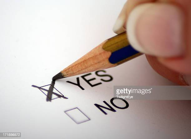 vote for yes - checkbox stock photos and pictures