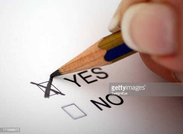 投票で「はい」