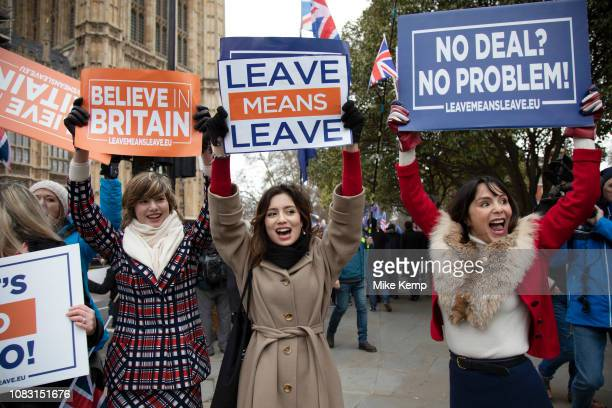 Vote Leave demonstrators protest with placards in Westminster on the day of the meaningful vote when MPs will back or reject the Prime Ministers...