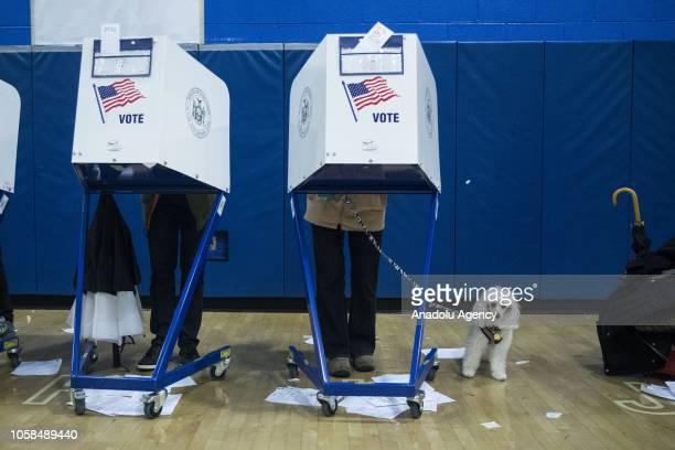 A voter stands behind a voting booth with a dog during the midterm election at the High School Art and Design polling station in Manhattan New York...