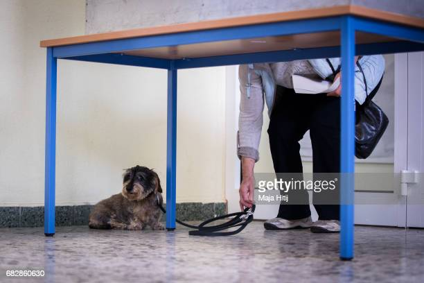 Voters cast their ballots as her dog Urne waits during state elections in North RhineWestphalia on May 14 2017 in Muehlheim an der Ruhr Germany The...