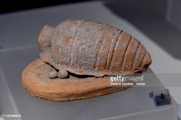Votive offerings connected with protecting fertility Uterus with reproduction of ova or embryos inside Vulci Fontanile di Legnisina Sanctuary and...