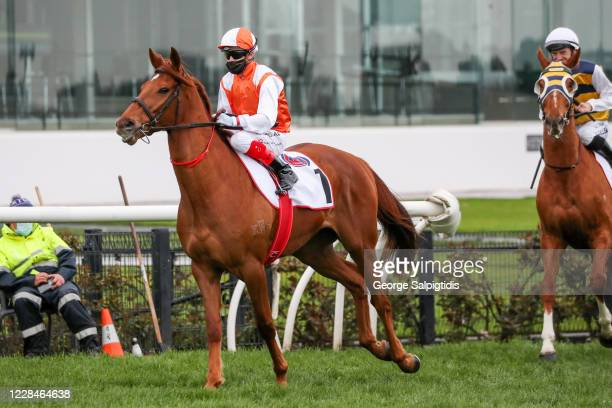 Vow And Declare ridden by Craig Williams heads to the barrier before the PFD Food Services Makybe Diva Stakes at Flemington Racecourse on September...
