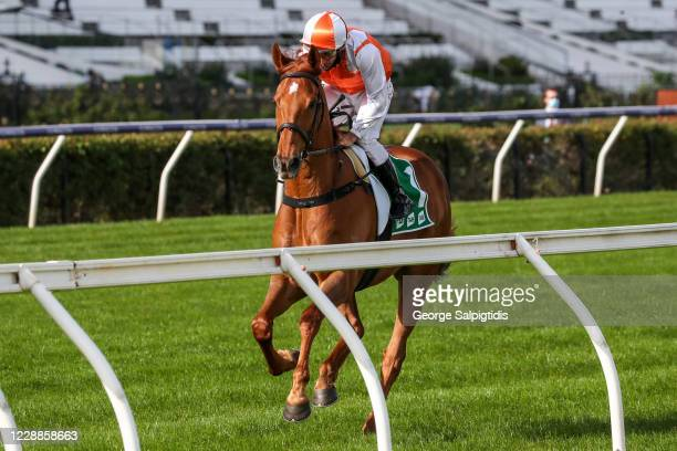 Vow And Declare ridden by Damien Oliver heads to the barrier before the TAB Turnbull Stakes at Flemington Racecourse on October 03, 2020 in...