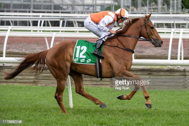 Vow And Declare ridden by Damien Oliver on the way to the barriers prior to the running of the TAB Turnbull Stakes at Flemington Racecourse on...