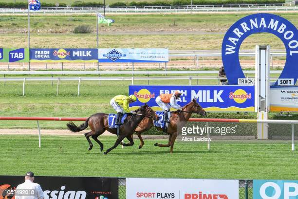 Vow And Declare ridden by James Winks wins the Metalcorp Steel Super Vobis Maiden Plate at Warrnambool Racecourse on October 19, 2018 in Warrnambool,...