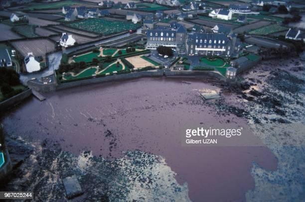 Vue aérienne de la marée noire sur les côtes bretonnes après le naufrage du pétrolier libérien Amoco Cadiz le 26 mars 1978 en France