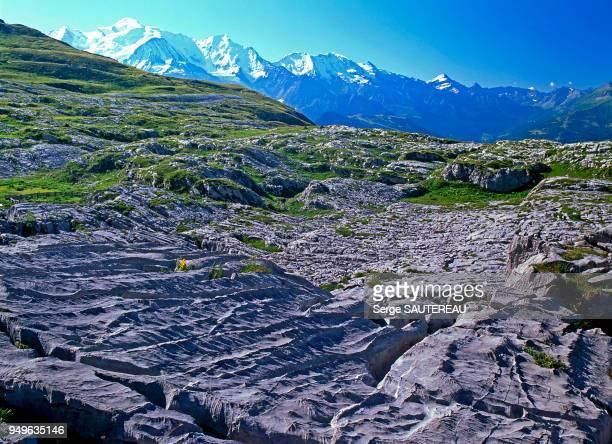 Vue des environs des chalets de Platé en direction du massif du Mont Blanc / Au 1er plan les lapiaz / fissures acérées résultant de la dissolution de...