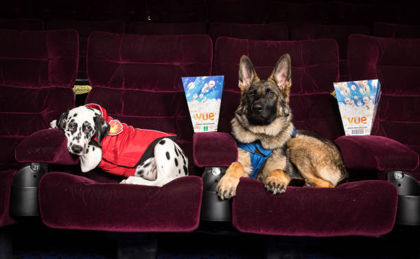 PAW Patrol: Big Screen Takeover Advanced Screening & Fun-In-The-Foyer Experience At Vue Piccadilly