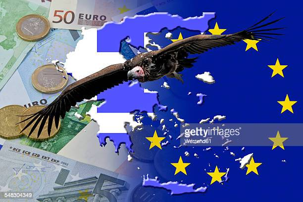 Vulture over Euro notes and coins and Greece flag