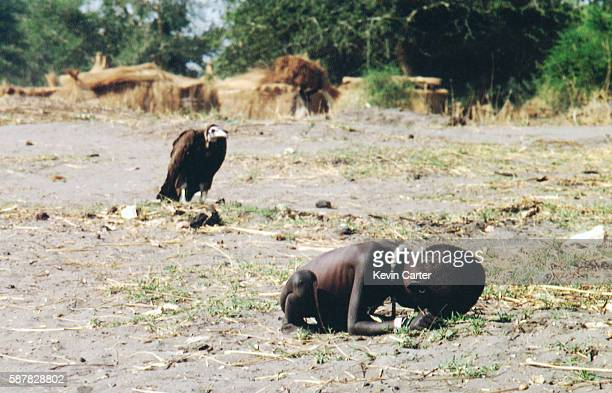 Vulture Watching Starving Child 1st March 1993