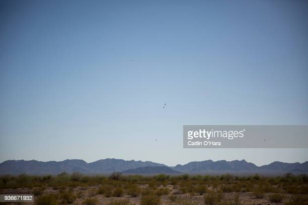 Vultures circle overhead on May 27 2017 in the Cabeza Prieta wilderness near Ajo Arizona