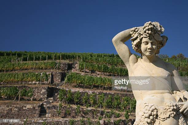 wackerbarth vineyard with statuea - saxony stock pictures, royalty-free photos & images