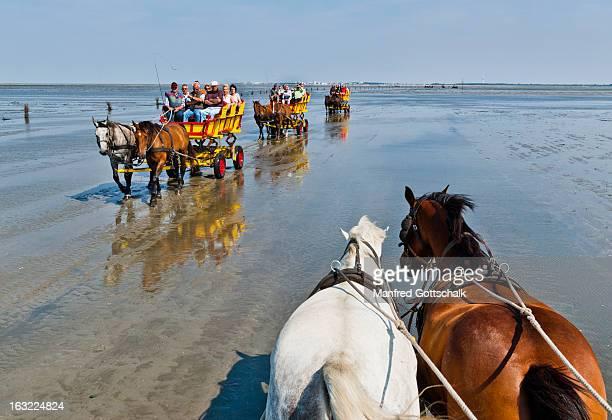 Wadden Sea at Neuwerk