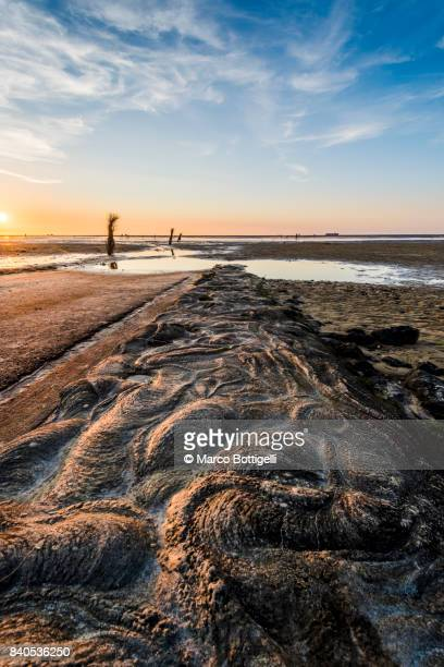 Wadden sea with low tide. Cuxhaven, Germany