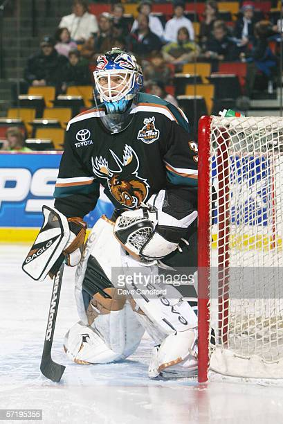 Wade Flaherty of the Manitoba Moose eyes the play against the Hamilton Bulldogs during the AHL game on January 7 2006 at Copps Colliseum in Hamilton...