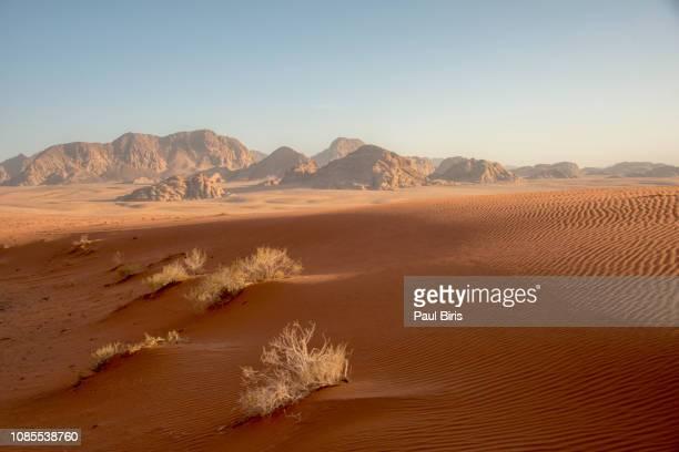 wadi rum desert in jordan - paisajes de jordania fotografías e imágenes de stock
