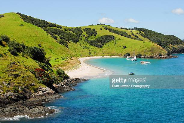 waewaetorea island - aerial - northland new zealand stock pictures, royalty-free photos & images