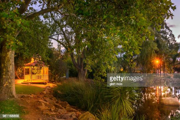 wagga botanic gardens - wagga wagga stock pictures, royalty-free photos & images