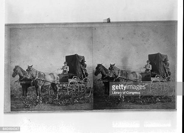 A wagoner drives his horses along the eastern section of the Union Pacific Railroad The railroad starts in Omaha Nebraska and will eventually wind...